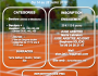 Tournoi Open jeunes et adultes du 14 au 28juillet